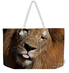 Weekender Tote Bag featuring the photograph African Lion by Meg Rousher