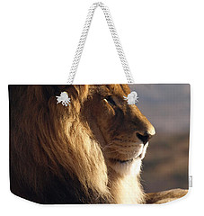 African Lion Weekender Tote Bag by James Peterson