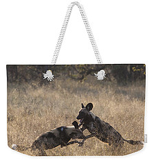 Weekender Tote Bag featuring the photograph African Wild Dogs Play-fighting by Liz Leyden