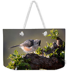 Weekender Tote Bag featuring the photograph After The Bath by Nava Thompson