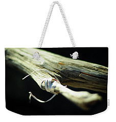 Weekender Tote Bag featuring the photograph After The Party by Rebecca Sherman