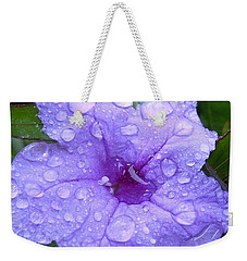 Weekender Tote Bag featuring the photograph After The Rain #1 by Robert ONeil