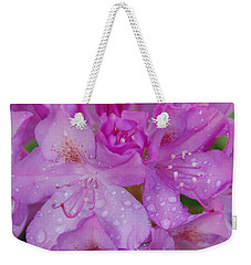After The Rain Weekender Tote Bag by Aimee L Maher Photography and Art Visit ALMGallerydotcom