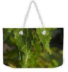 After The Rain Weekender Tote Bag