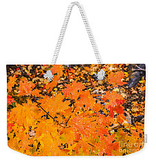 After The Rain Weekender Tote Bag by Sue Smith