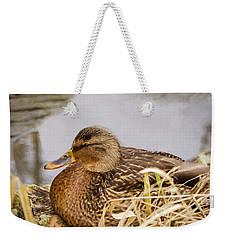 Weekender Tote Bag featuring the photograph Afternoon Siesta by Jordan Blackstone