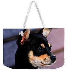 Agie - Chihuahua Pitbull Weekender Tote Bag