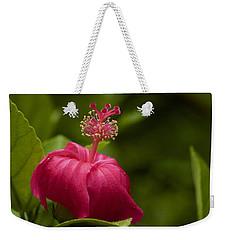 Akalewa Weekender Tote Bag