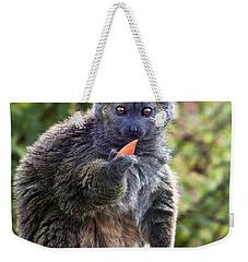Alaotran Gentle Lemur Weekender Tote Bag by Terri Waters