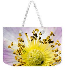 Alberta Wild Rose Weekender Tote Bag by Dee Cresswell