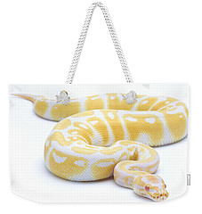 Albino Royal Python Weekender Tote Bag by Michel Gunther