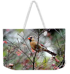 Alert - Northern Cardinal Weekender Tote Bag