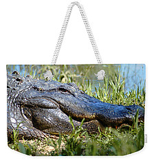 Alligator Smiling Weekender Tote Bag