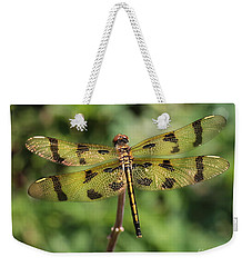 All That Glitters Is Gold Weekender Tote Bag by Kenny Glotfelty