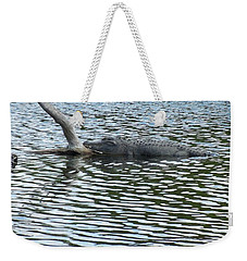 Weekender Tote Bag featuring the photograph Alligator Resting On A Log by Ron Davidson