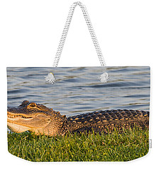 Alligator Smile Weekender Tote Bag