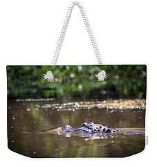 Alligator Swimming In Bayou 1 Weekender Tote Bag