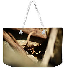 Weekender Tote Bag featuring the photograph Almost Golden by Rebecca Sherman