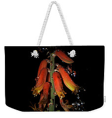 Weekender Tote Bag featuring the photograph Aloe Flower by Leticia Latocki