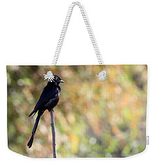 Weekender Tote Bag featuring the photograph Alone - Black Drongo  by Ramabhadran Thirupattur