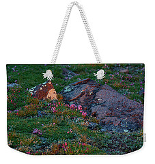 Weekender Tote Bag featuring the photograph Alpine Blush by Jim Garrison