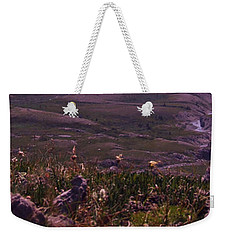 Weekender Tote Bag featuring the photograph Alpine Floral Meadow by Marianne NANA Betts