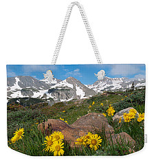 Weekender Tote Bag featuring the photograph Alpine Sunflower Mountain Landscape by Cascade Colors