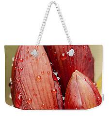 Amaryllis Weekender Tote Bag by Meg Rousher