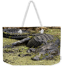 American Alligator Smile Weekender Tote Bag
