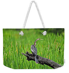 American Anhinga Weekender Tote Bag by Al Powell Photography USA