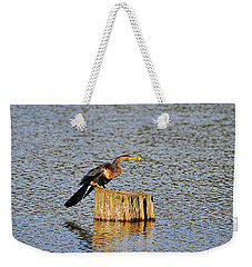 American Anhinga Angler Weekender Tote Bag by Al Powell Photography USA