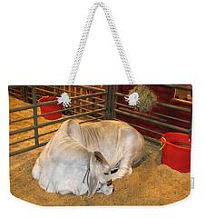 American Brahman Heifer Weekender Tote Bag by Connie Fox