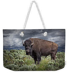 American Buffalo Or Bison In Yellowstone Weekender Tote Bag