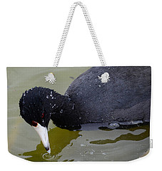 Weekender Tote Bag featuring the photograph American Coot by Debra Martz