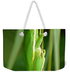 American Green Tree Frog Weekender Tote Bag by Kim Pate