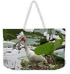 American White Ibis In Brazos Bend Weekender Tote Bag