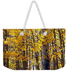 Among The Aspen Trees In Fall Weekender Tote Bag