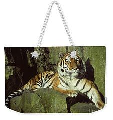 Amur Tiger Weekender Tote Bag by Phil Banks