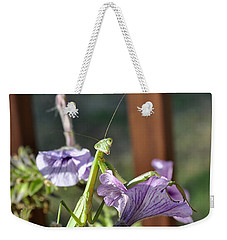 Weekender Tote Bag featuring the photograph An Autumn Surprise by Verana Stark