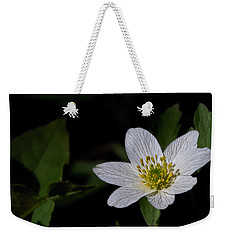 Anemone Nemorosa  By Leif Sohlman Weekender Tote Bag