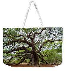 Weekender Tote Bag featuring the photograph Angel Oak Tree by Dale Powell