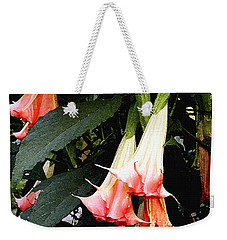 Weekender Tote Bag featuring the photograph Pink Angel Trumpets  by James C Thomas