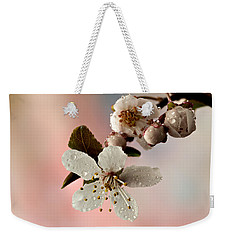 Announcing Spring Weekender Tote Bag by Mary Jo Allen