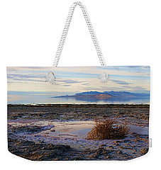 Weekender Tote Bag featuring the photograph Antelope Island - Tumble Weed by Ely Arsha