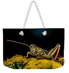 Antenna Down Weekender Tote Bag by Paul Freidlund
