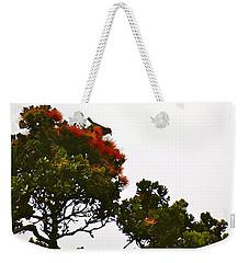 Apapane Atop An Orange Ohia Lehua Tree  Weekender Tote Bag by Lehua Pekelo-Stearns
