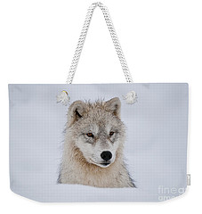 Arctic Pup In Snow Weekender Tote Bag by Wolves Only