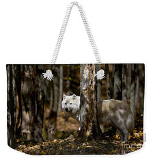 Weekender Tote Bag featuring the photograph Arctic Wolf In Forest by Wolves Only