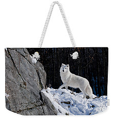 Weekender Tote Bag featuring the photograph Arctic Wolf On Rock Cliff by Wolves Only