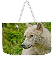 Arctic Wolf Pictures 241 Weekender Tote Bag